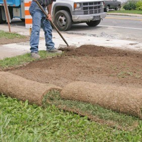 install sod grass, install sod in ontario, how to lay sod