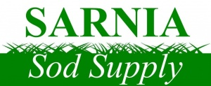 sarnia sod, sarnia sod supplier, sarnia sod for sale, sarnia sod delivery