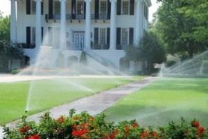 sod watering, watering a new sod lawn