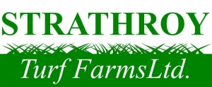 ontario sod, strathroy turf farms, southwestern ontario sod, london sod, strathroy sod farm, strathroy turf farms ontario